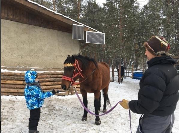FYzE89aw В Якутске лошадь откусила ухо ребенку